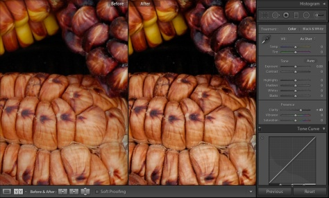 Image showing the effect of a Lightroom Clarity adjustment on a Nikon D70 photograph