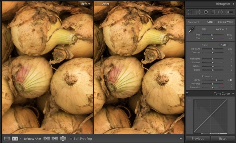Photo showing the effect of a Lightroom Clarity adjusment on a Nikon D810 photograph
