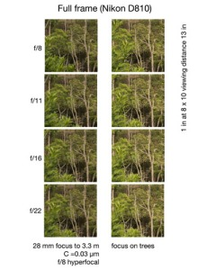 Photos to test hyperfocal distances.