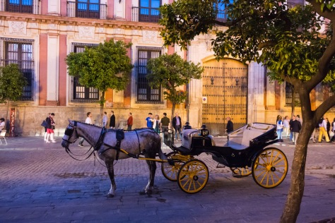 Horse carriage in Seville. Photo by Eduardo Libby.