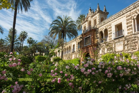 Image of Internal wall and rose gardens at the Alcázar of Seville. Photo by Eduardo Libby