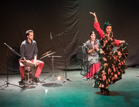Photo of musicians and dancer in A Tierra Flamenco Show.