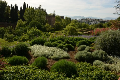 The Gardens of The Alhambra. Photo by Eduardo Libby