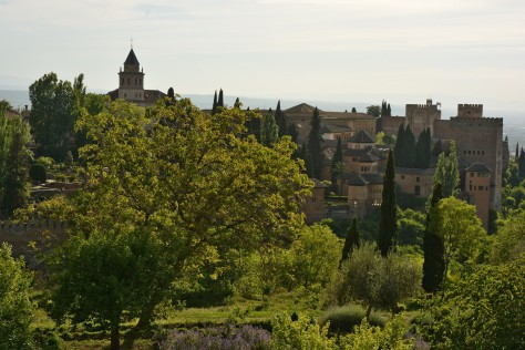 Imahe of the Alhambra seen through the green gardens. Photo by Eduardo Libby