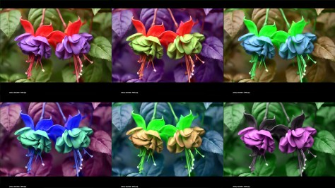 Photos of fuchsias in false color made by rearranging the RGB channels. Image by Eduardo Libby